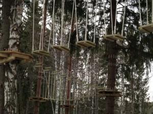 Ответы на вопросы о веревочных парках