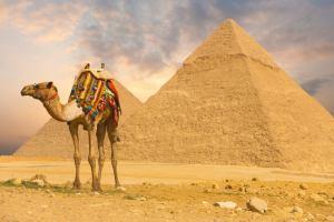 Египет в ожидании Владимира Путина