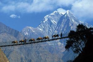 Пять городов мира, где турист сможет сильно сэкономить