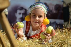 Феерия света и антоновские яблоки: что ждет туристов в ближайшие выходные