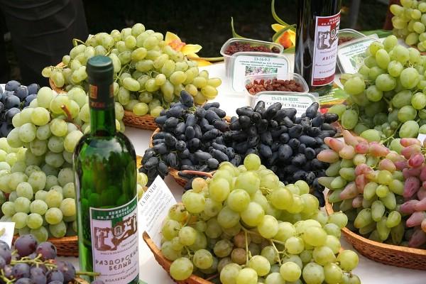 Туристов познакомят с традициями виноделия на фестивале молодого вина в Ростовской области