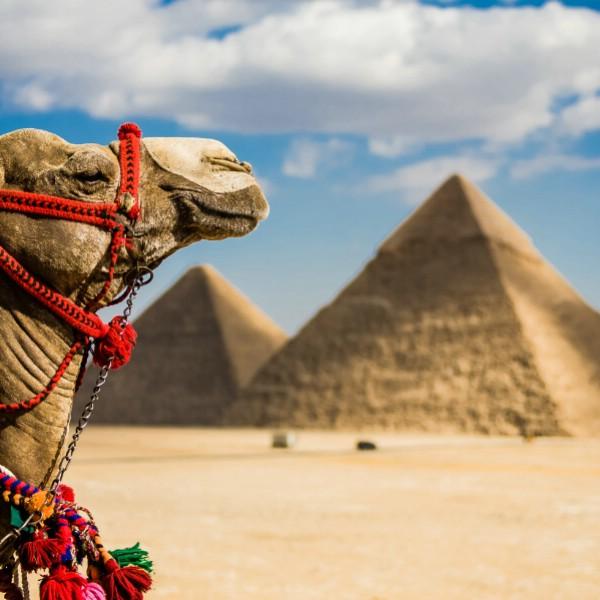 Эксперт: возвращение Египта принесет российскому выездному рынку 1,5-2 млн туристов