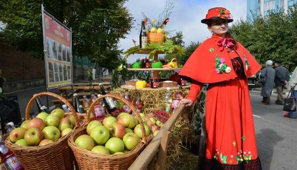 В Липецкой области пройдет фестиваль