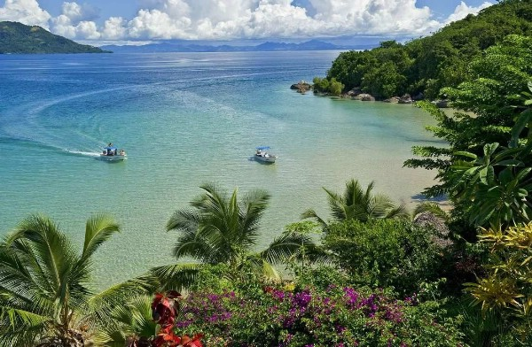 На Мадагаскаре зафиксирована вспышка чумы