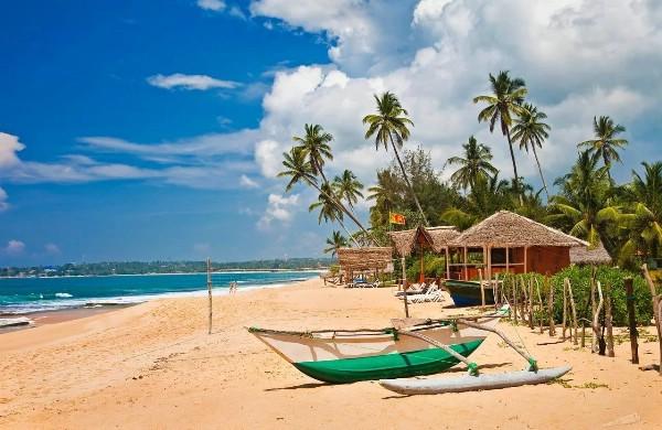 АТОР: Шри-Ланка планирует поддерживать туристические чартеры из России