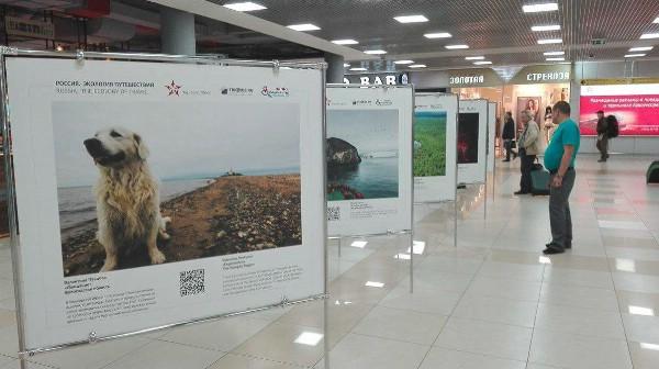 Выставка «Россия. Экология путешествий» открылась в терминале «Аэроэкспресса» в Шереметьево