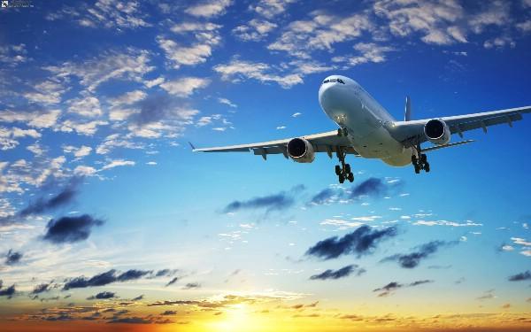 Подставят плечо: российские авиакомпании вывезут пассажиров