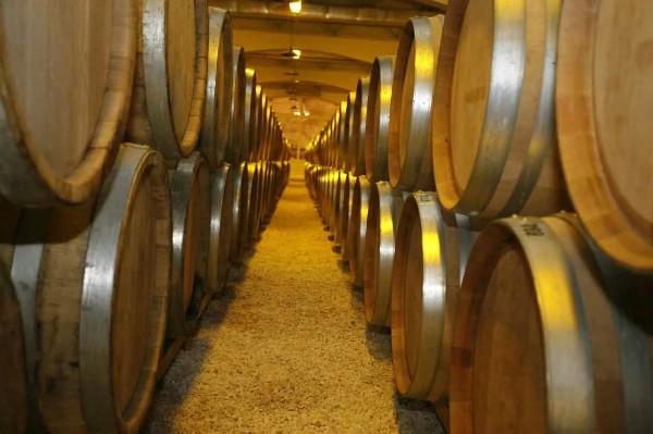 Новый винзавод с центром винного туризма за 2 млрд рублей появится на Кубани в 2020 году