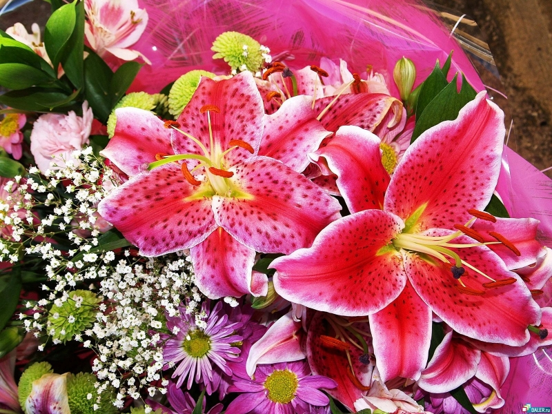 Доставка свежих цветов вашим близким и родным