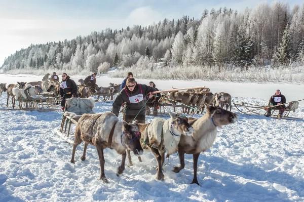 Итоги регионального этапа национальной премии событийного туризма подвели во Владимире