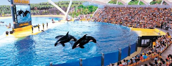 В 2017 году зоопарк завоевал всемирное признание экологов и туристов