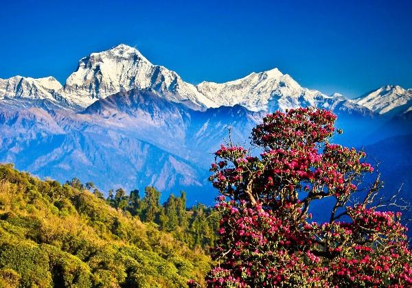 Власти Непала готовы отказаться от туристического налога