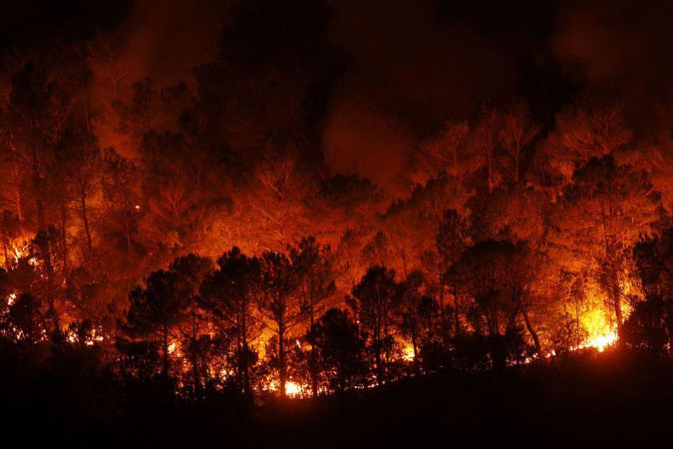 От пожаров в Испании и Португалии российские туристы не пострадали