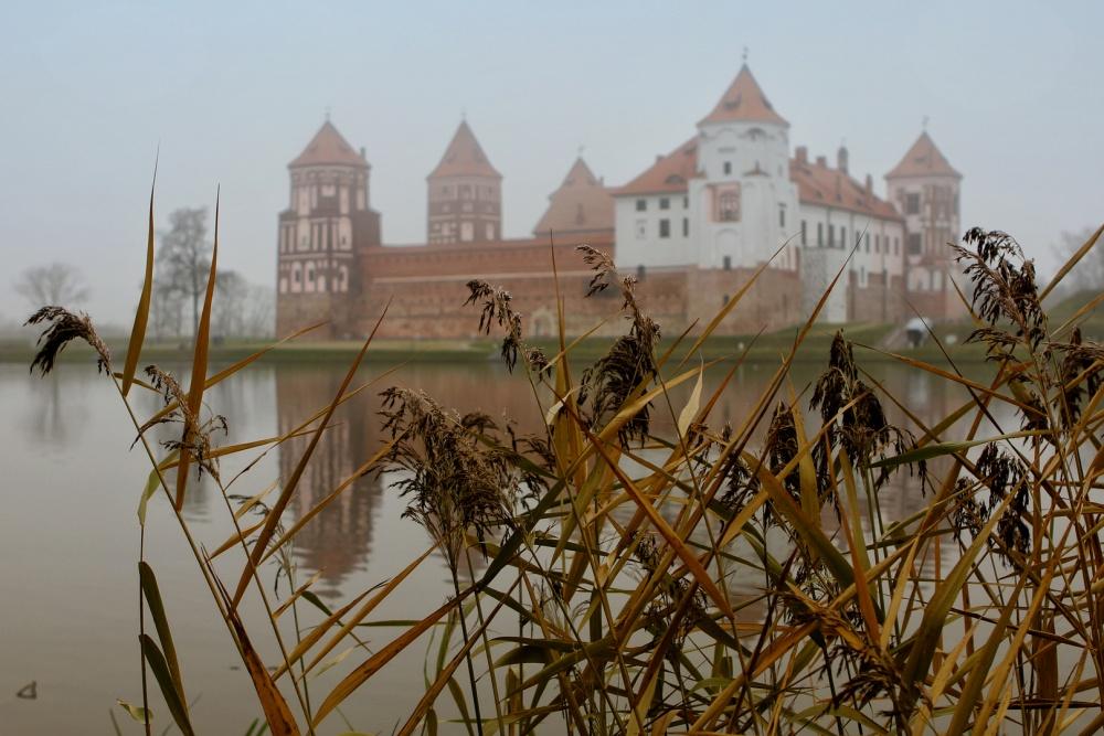 Белоруссия, Литва и Чехия оказались самыми бюджетными направлениями для туристов на ноябрьские