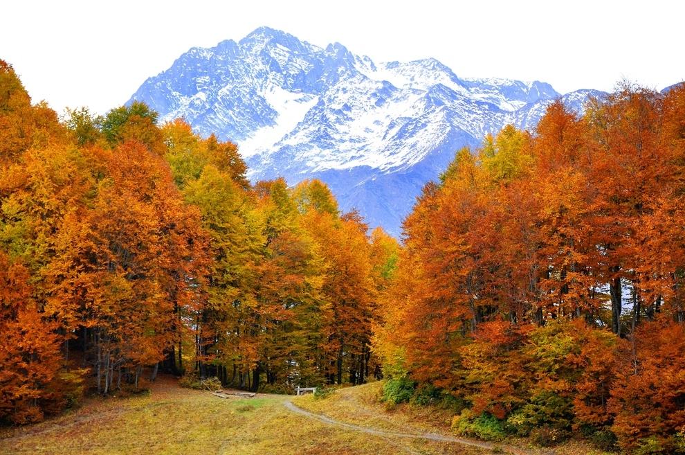 В октябре самостоятельные российские туристы выбирают Сочи и Тбилиси
