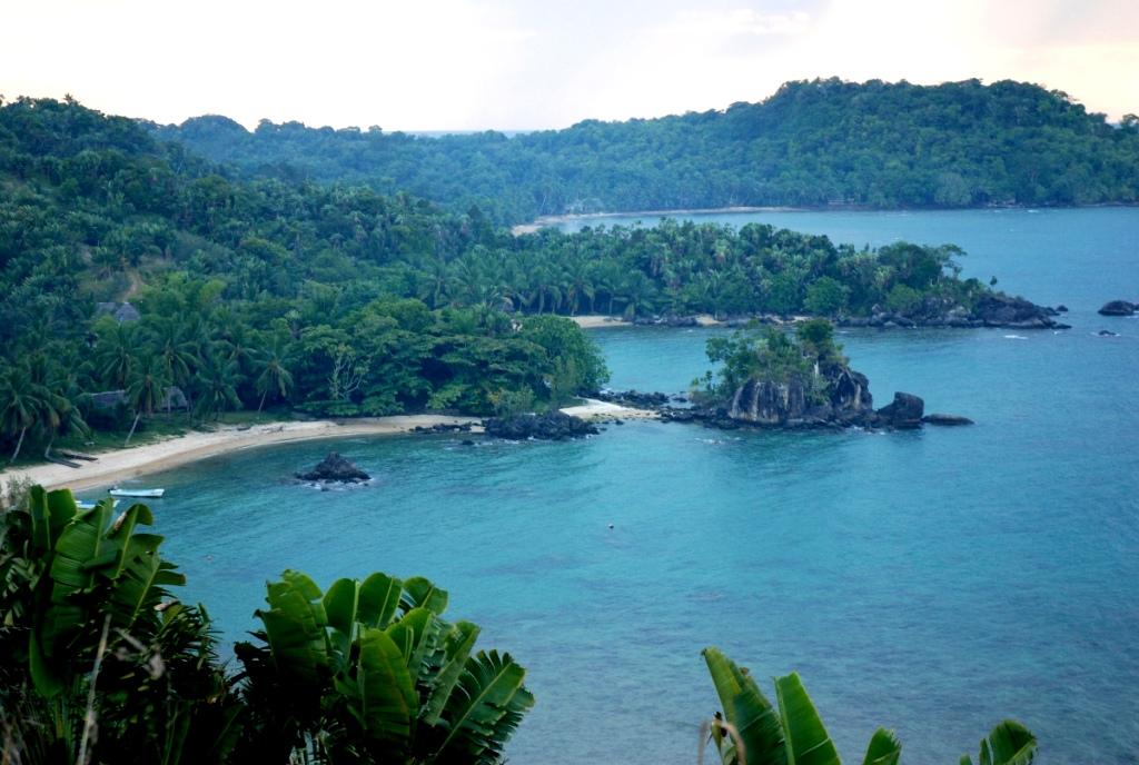 Роспотребнадзор предупредил туристов о вспышке чумы на Мадагаскаре