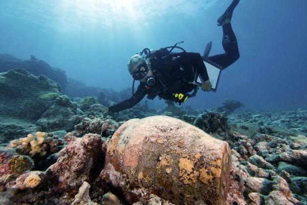 Подводный город Акра в Керченском проливе может стать туристической достопримечательностью
