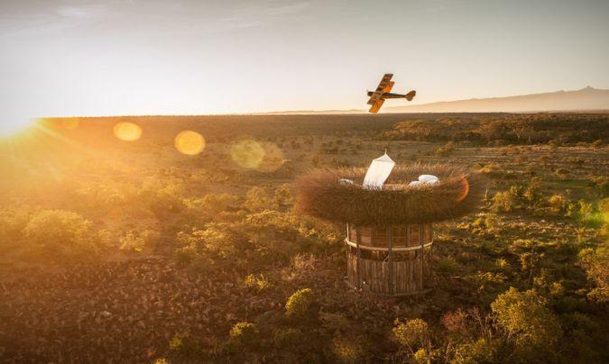 Пожить в гнезде гигантской птицы — лакшери-отель в Кении
