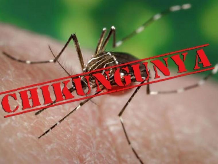 Роспотребнадзор предупредил туристов о лихорадке чикунгунья в Непале