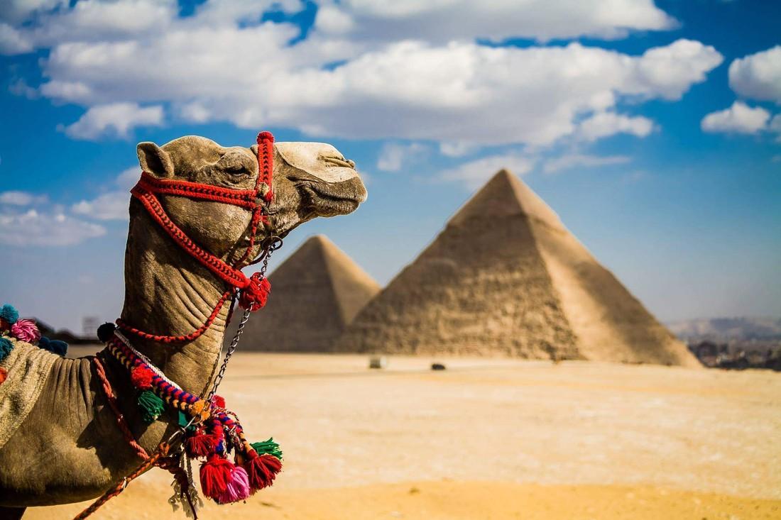 UNWTO: Египет за 2017 год примет 8 млн туристов, став второй по скорости развития туризма страной мира