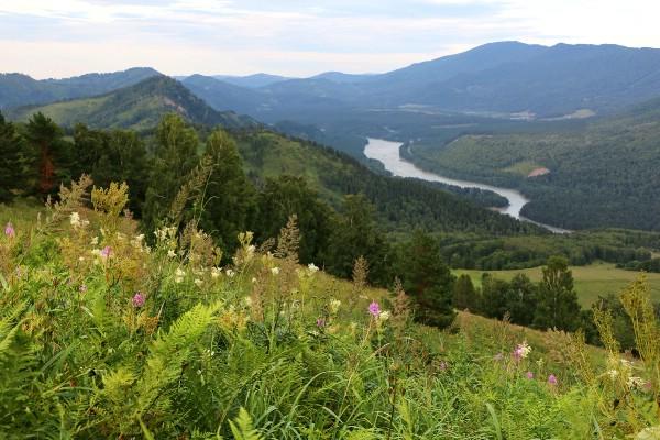 Алтайский край примет более 2,1 млн туристов по итогам 2017 года