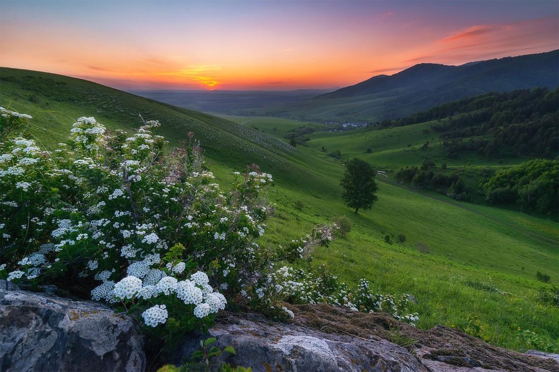 По итогам 2017-го турпоток в Алтайский край увеличится до 2.1 млн человек