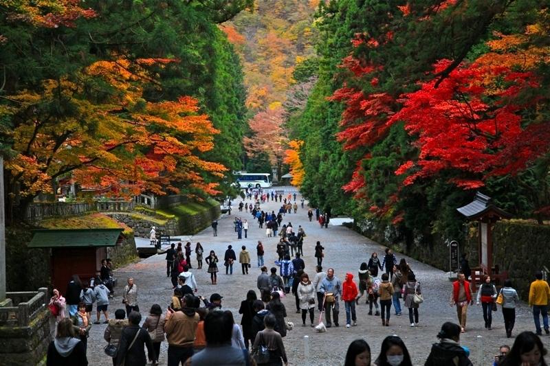 Российские туристы поставили рекорд по турпотоку в Японию